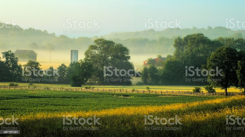 Morning Farm stock photo