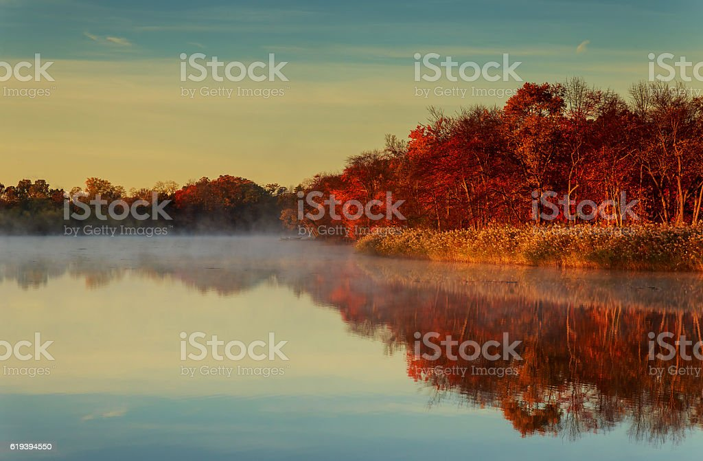 morning fog at lake plansee with colorful autumn trees stock photo