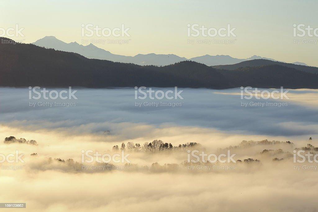 Morning Fog, Fraser Valley, British Columbia stock photo