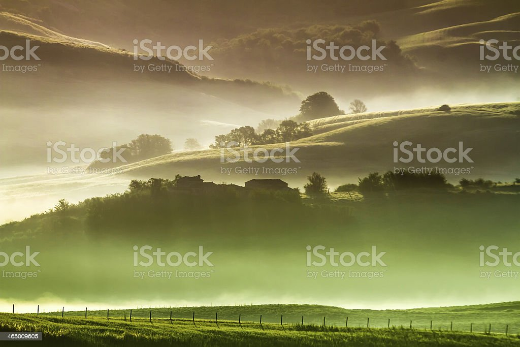 Morning fog in countryside Tuscany royalty-free stock photo