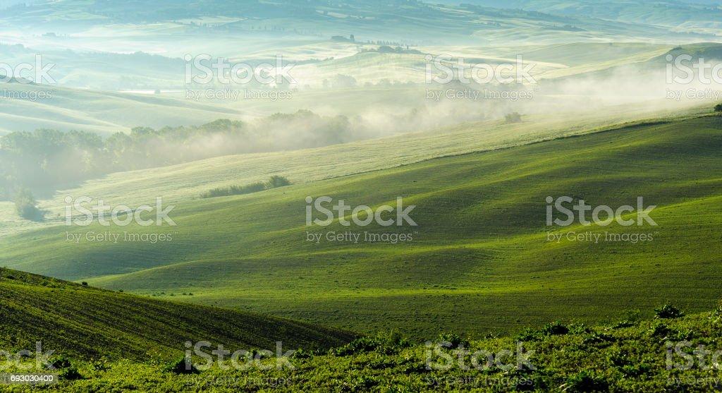 Morning fog settles in Tuscan valley stock photo