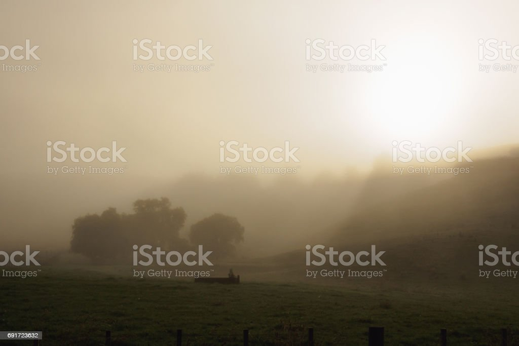 Morning Fog Waikato NZ stock photo