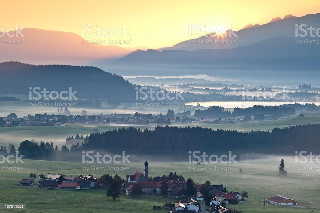 morning glory in bavaria germany stock photo