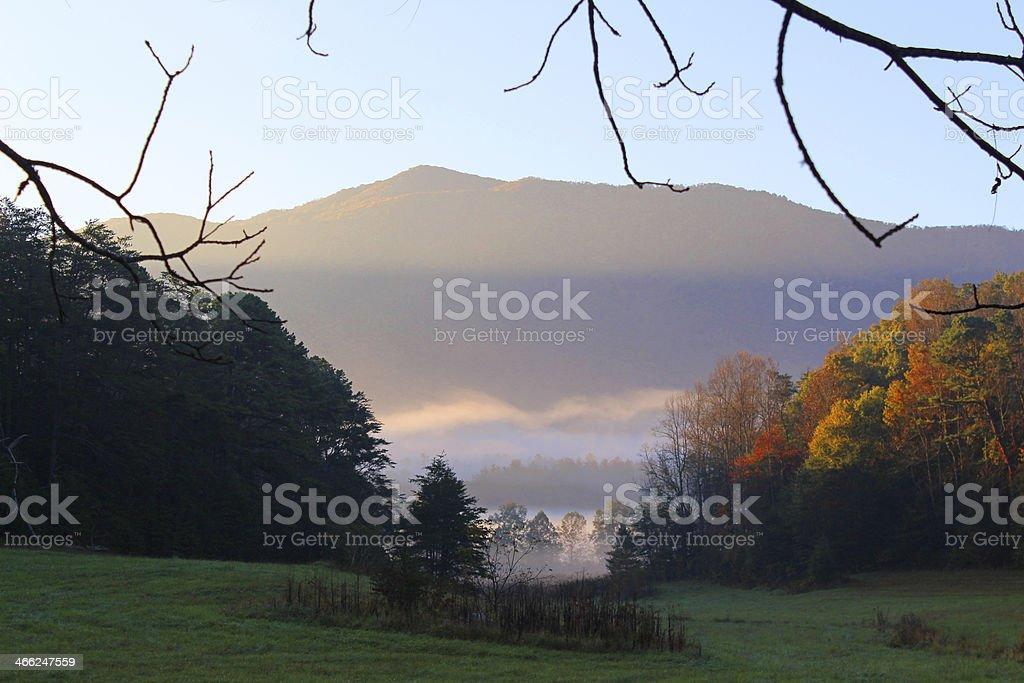 Morning Glow stock photo