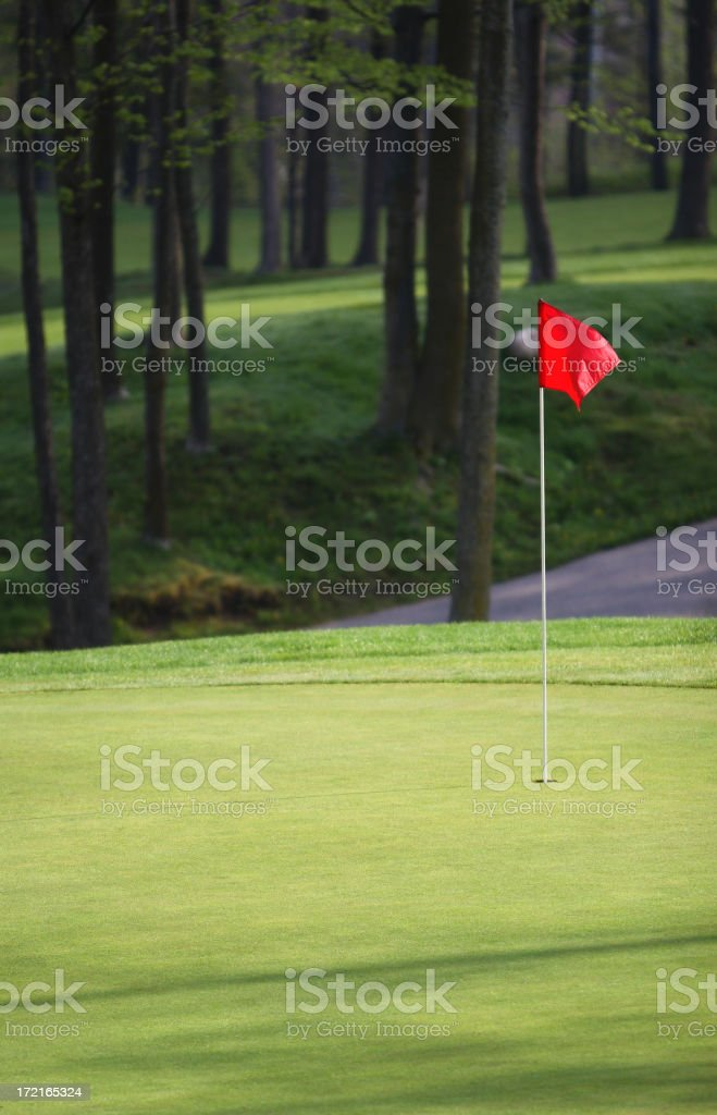 Morning Golf Green royalty-free stock photo