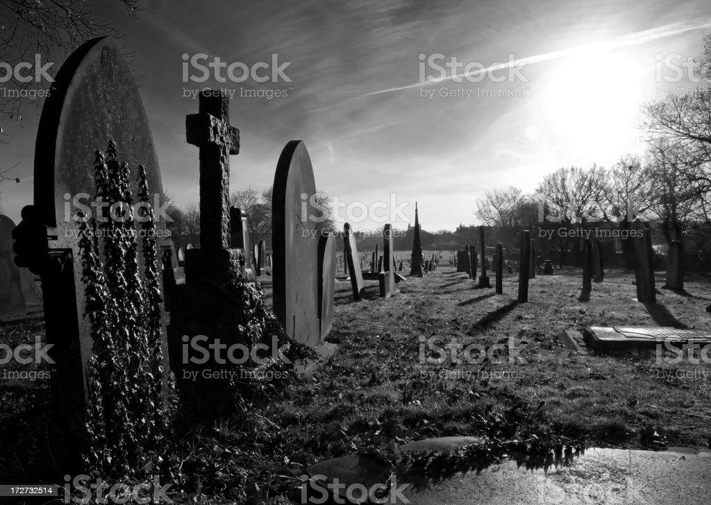 morning graveyard royalty-free stock photo