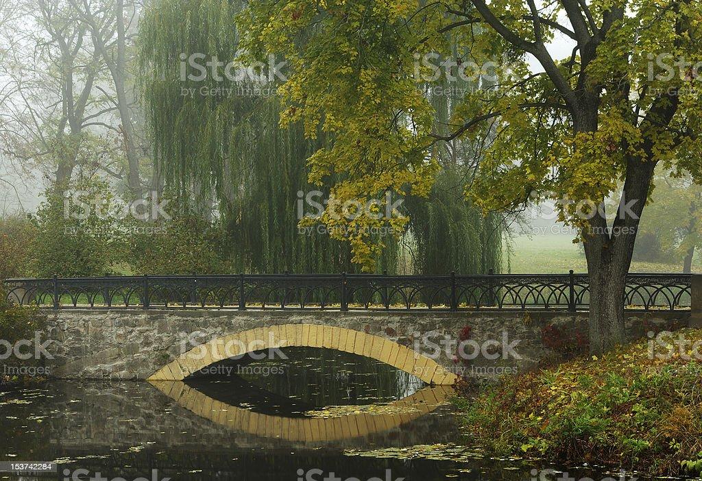 Morning in autumn park, bridge, fallen leaves stock photo