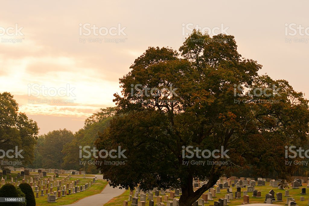 Morning in Cemetery stock photo