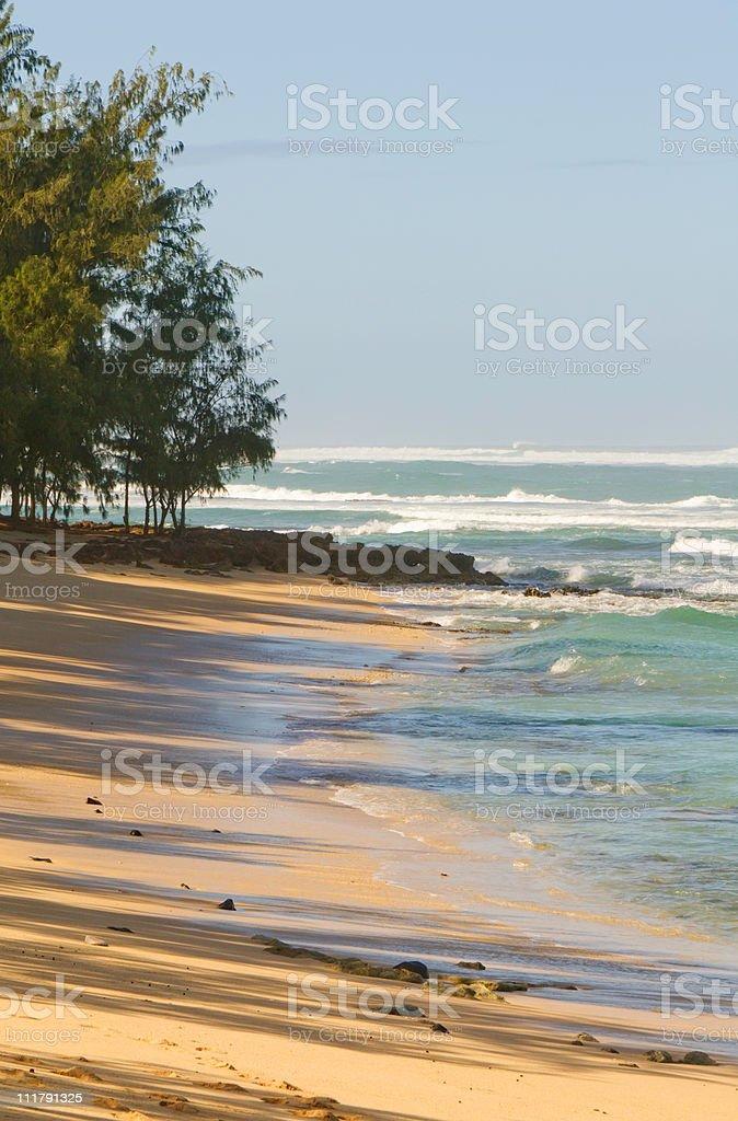Morning in Hawaii royalty-free stock photo