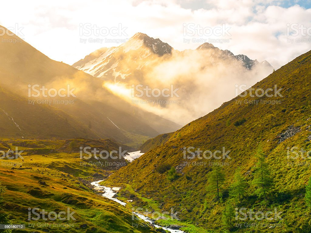 Morning in the alpine valley stock photo