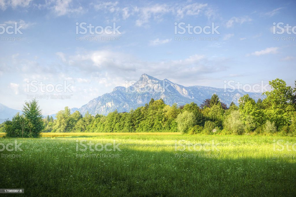 Morning in the Alps royalty-free stock photo