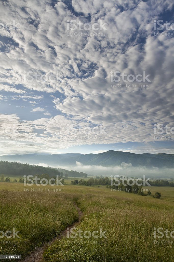 Morning in the Cove royalty-free stock photo