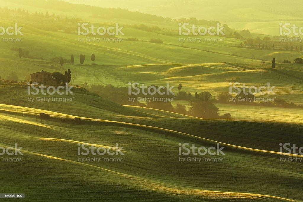 morning in Tuscany royalty-free stock photo