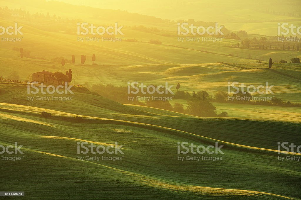 morning in Tuscany royalty-free stock photo