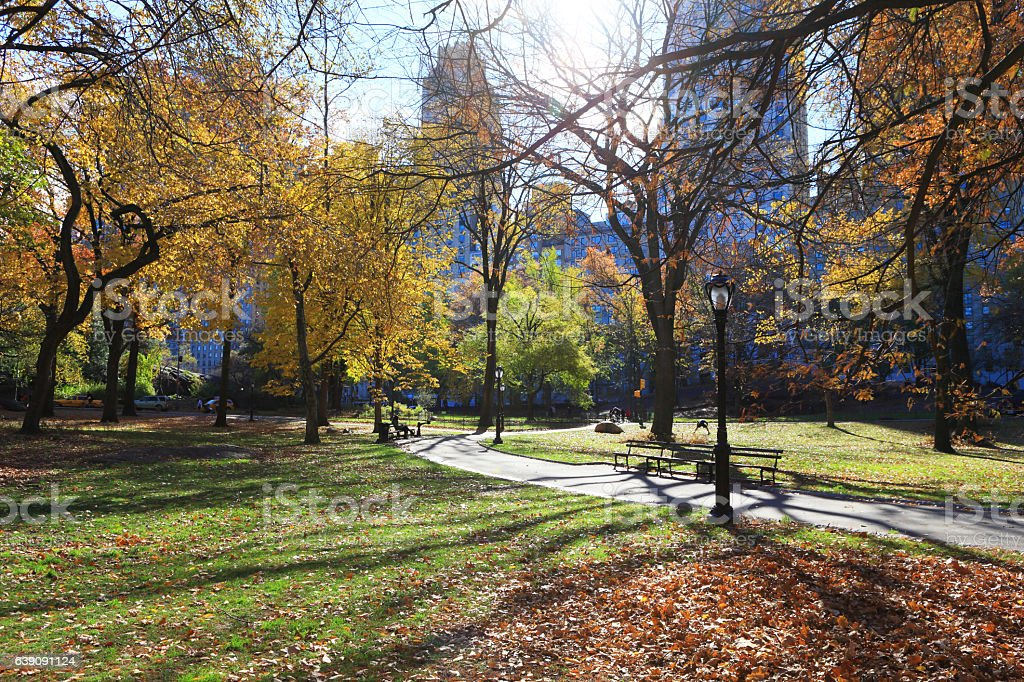 Morning landscape at Central Park, Manhattan, New York. stock photo