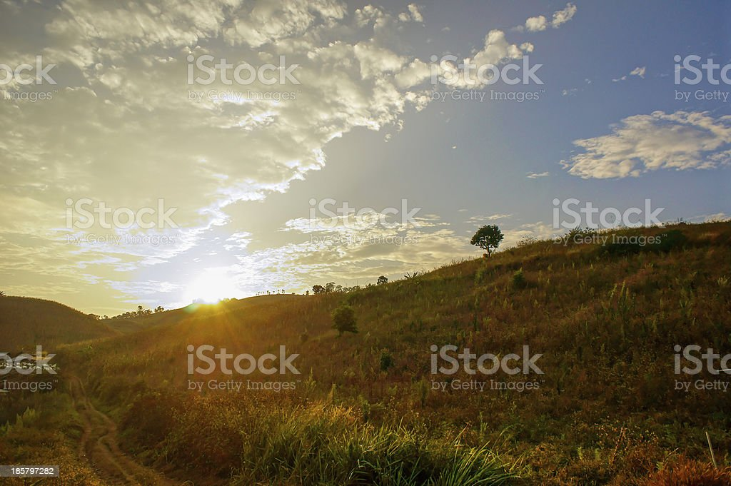 Morning Landscpae stock photo