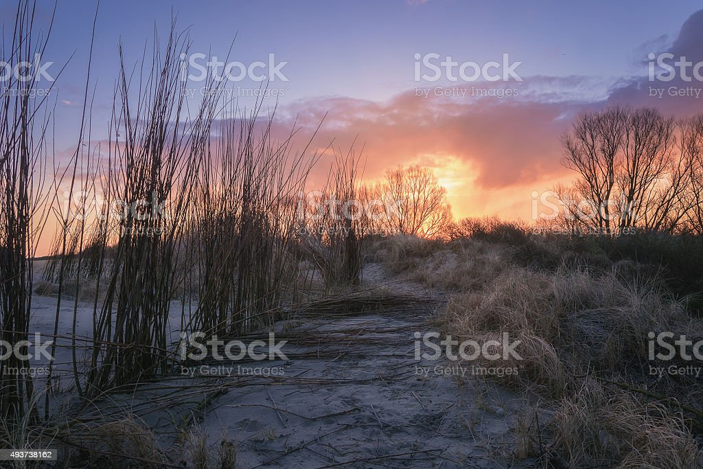 Morning Light in Holland stock photo