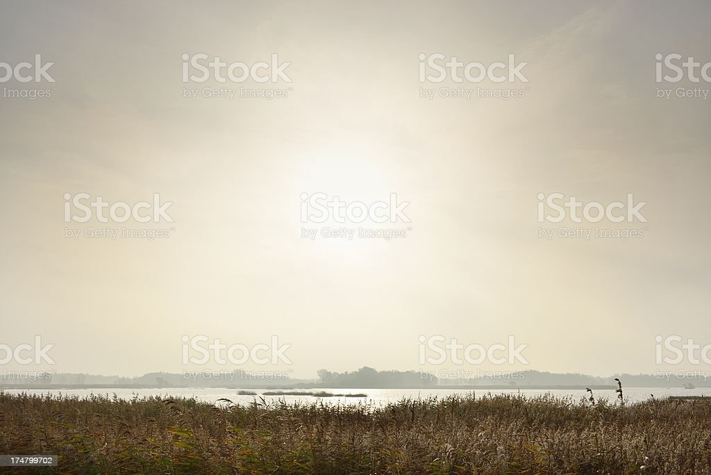 Morning light over a lake stock photo