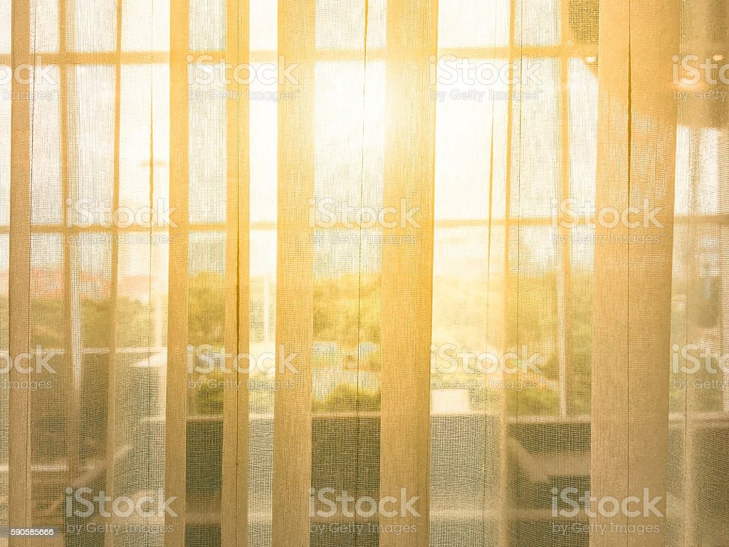 Morning light through the blinds in his office overlooking nature. stock photo