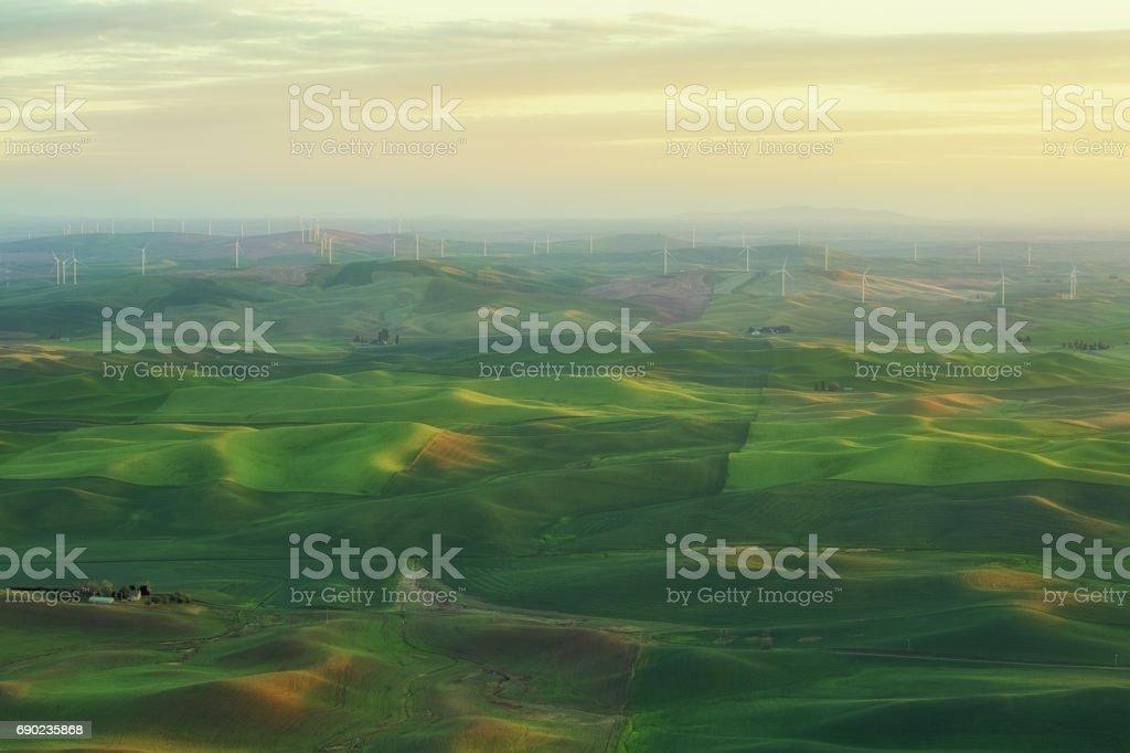 Morning Lights on Palouse Rolling Hills stock photo