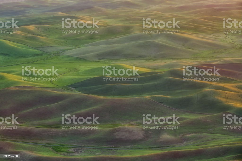 Morning Lights on the Rolling Hills stock photo