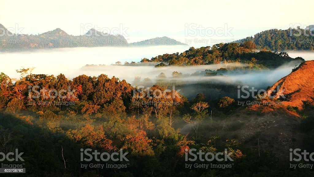 Morning mist at Tak, Thailann1d stock photo