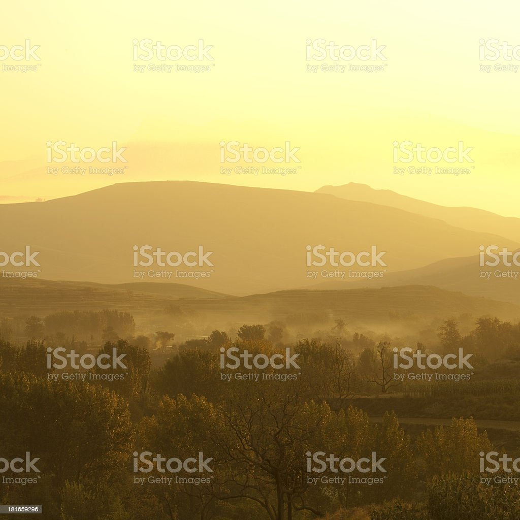 Morning mist cover tree and mountain royalty-free stock photo
