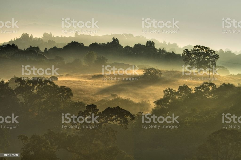 Morning Mist - HDR Photo royalty-free stock photo