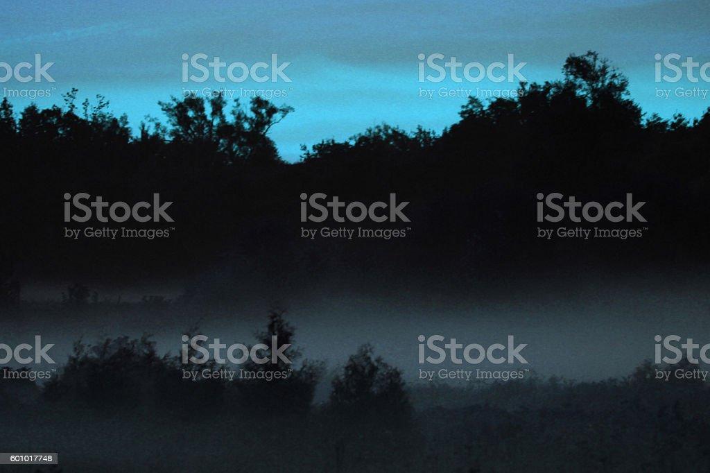Morning Mist in the Landing stock photo