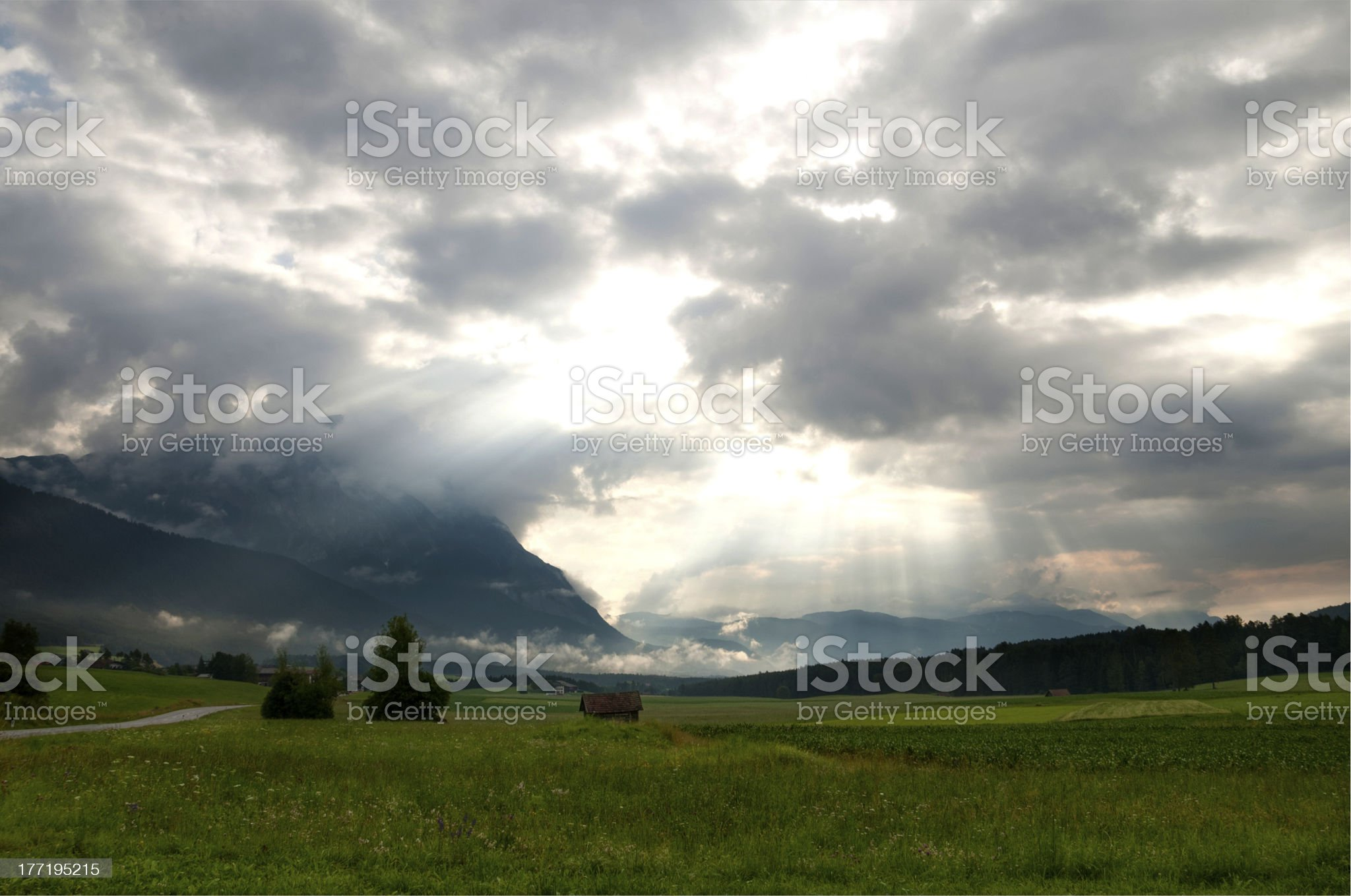 Morning mists royalty-free stock photo