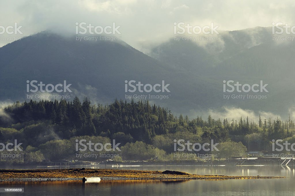 Morning misty landscape at Vancouver Island, Canada royalty-free stock photo