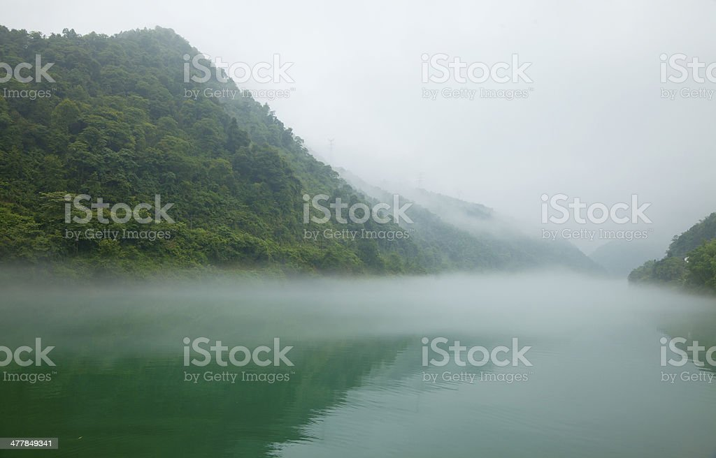 morning of the river royalty-free stock photo