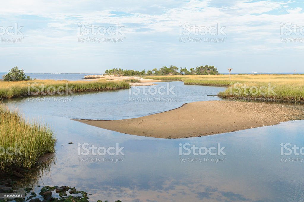 Morning On a Picturesque Tidal Marsh stock photo