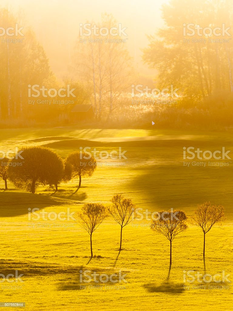 Morning on Golf Course stock photo