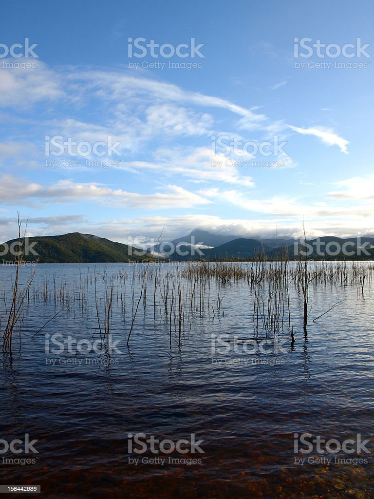 Morning on Lake Burbury in Tasmania, Australia royalty-free stock photo