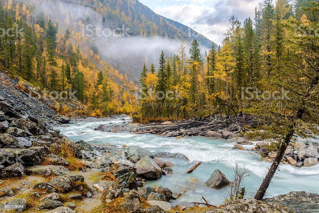 Morning on the Akkem river in autumn stock photo