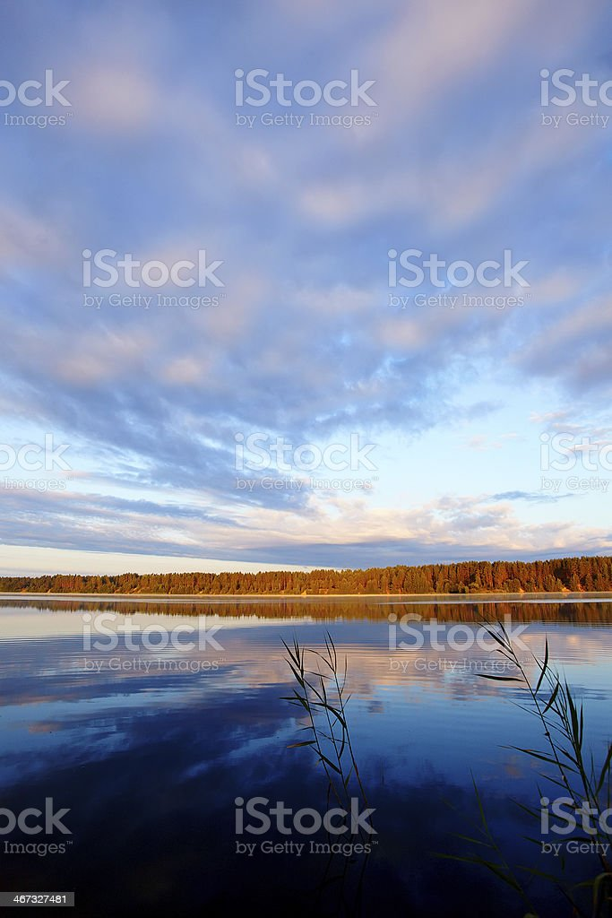 Morning on the lake. royalty-free stock photo