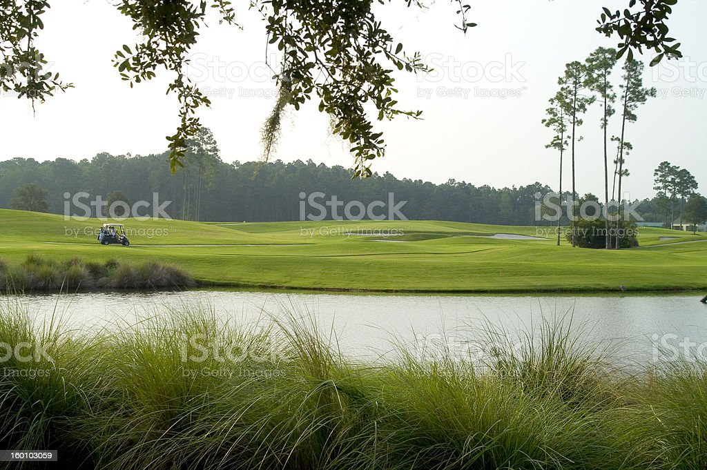 Morning on the Links royalty-free stock photo