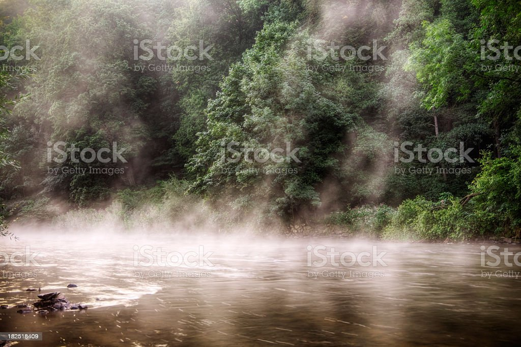 Morning on the Vltava River royalty-free stock photo