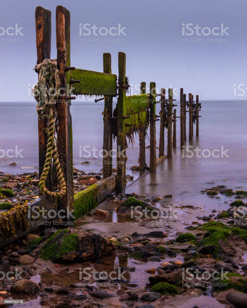 Morning pilings stock photo