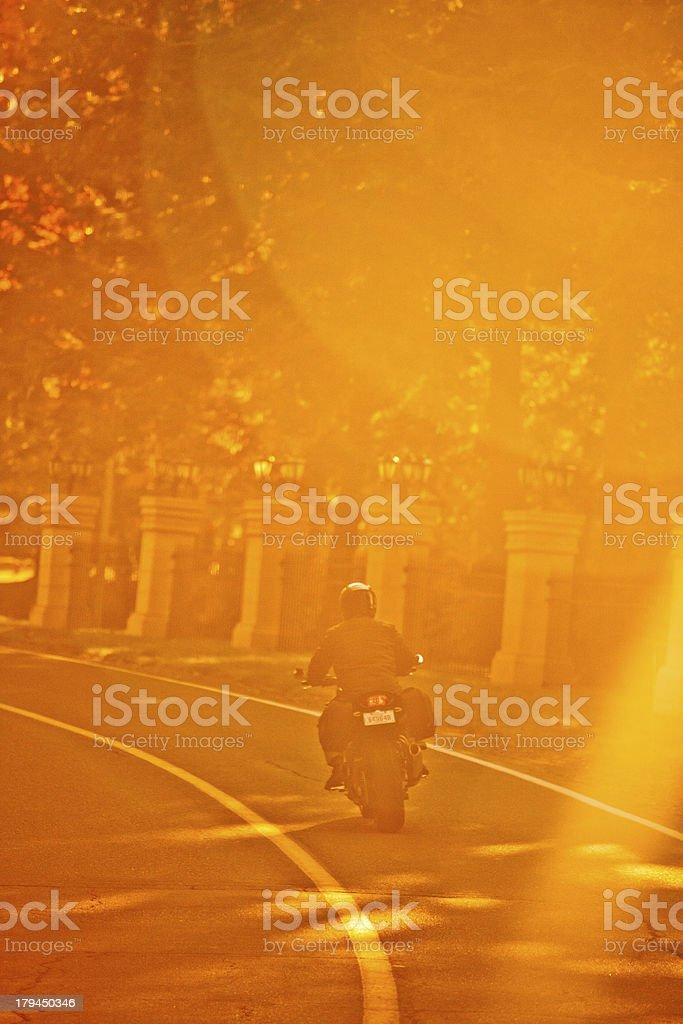 Morning ride royalty-free stock photo