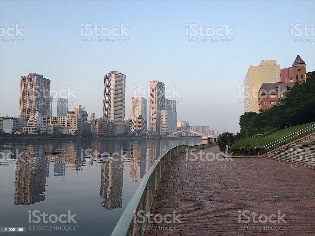 Manhã Rio em Tóquio foto de stock royalty-free