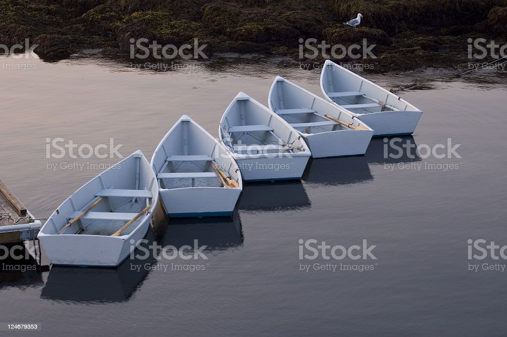 Morning Rowboats stock photo