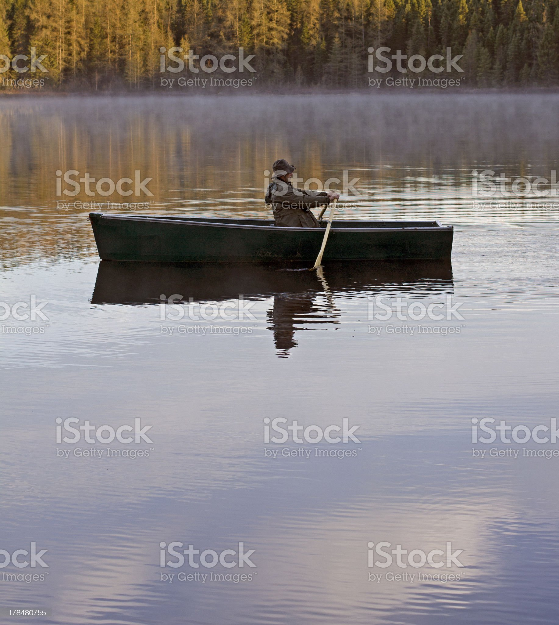 morning rowing royalty-free stock photo
