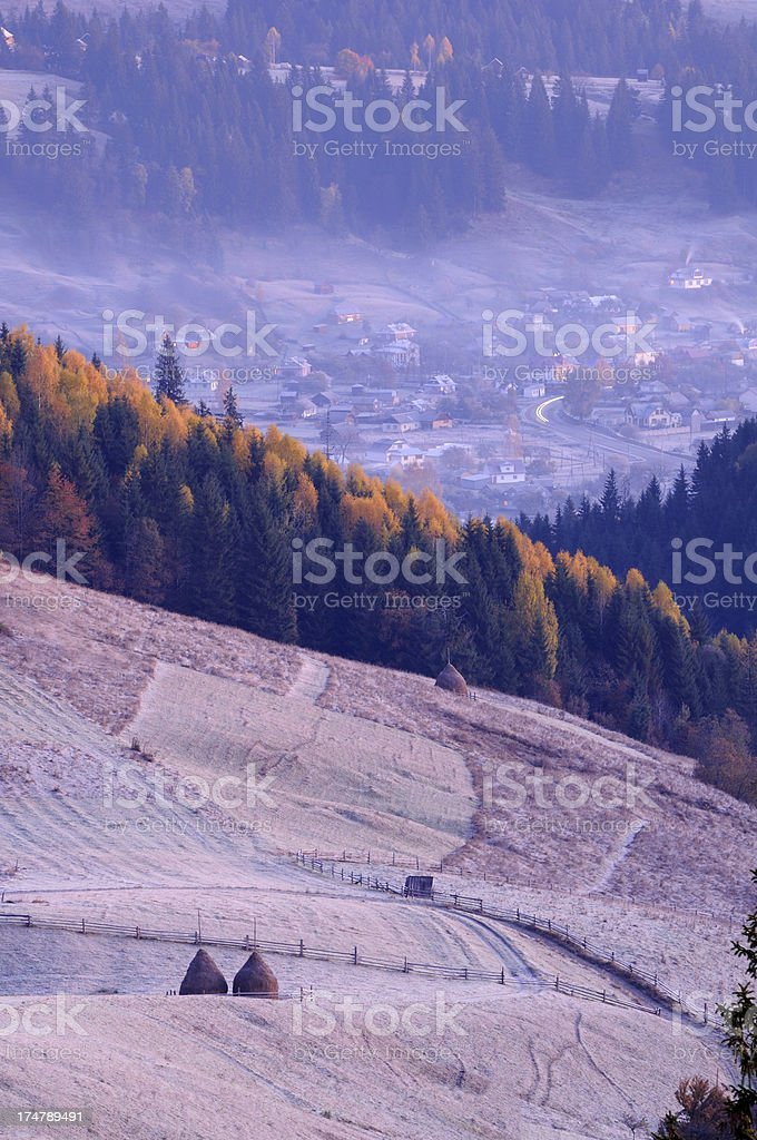Morning rural landscape with hoarfrosted grass stock photo