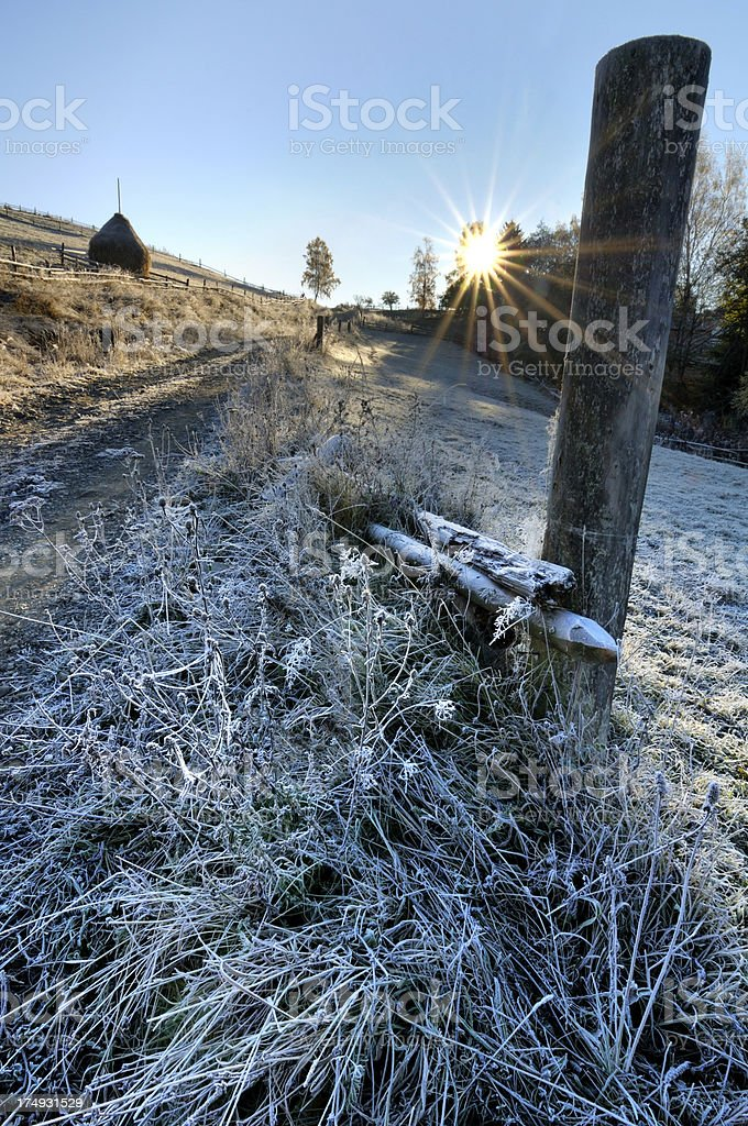 Morning rural landscape with old fence and hoarfrosted grass stock photo