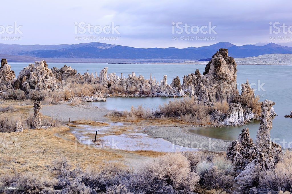 Morning shore of Mono Lake, California, USA royalty-free stock photo