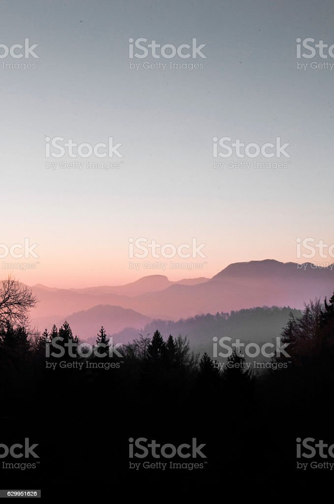 morning silhouettes stock photo