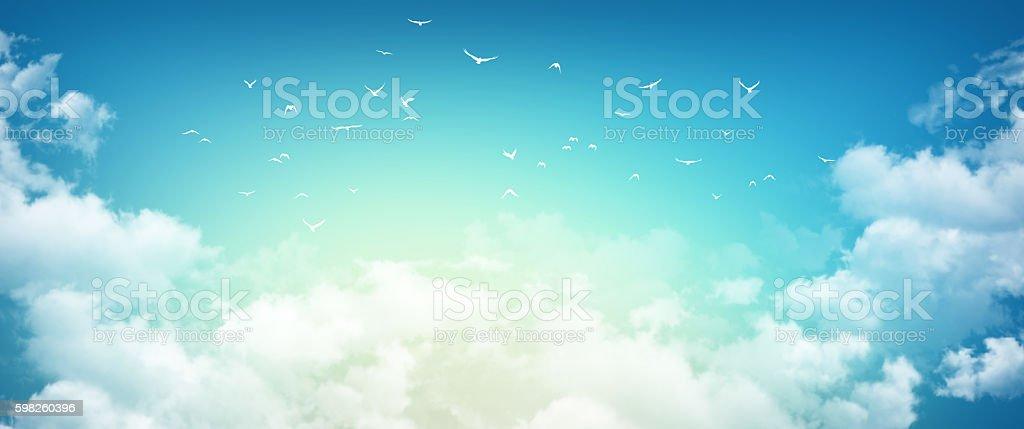 Morning sky sensation stock photo