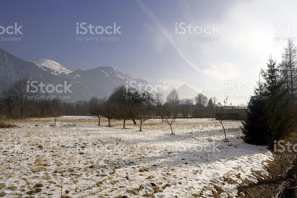 Morning Snow stock photo